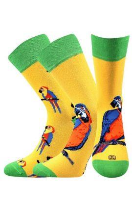 Bunte Socken mit Papagei